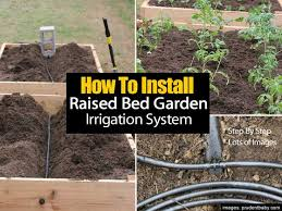 how to install a raised bed garden irrigation system step by step
