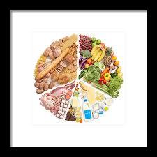 Pie Food Chart Food Pyramid Pie Chart Framed Print