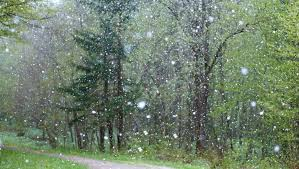 Image result for rainy weather