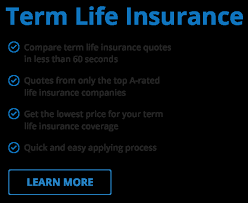 Zander Life Insurance Quote Cool Term Life Insurance Quotes Zander Archives Kerbcraftorg