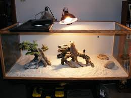 heat lamp for bearded dragon lighting and ceiling fans