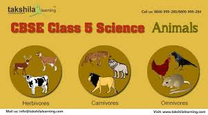 Cbse Class 5 Science Animal Video Lectures For Class 5 Animals