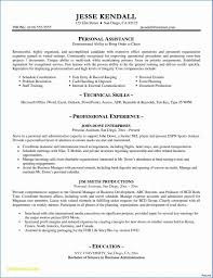 Science Resume Templates New 003 Executive Resume Template Word Doc