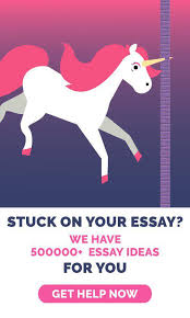what are the different types of essays and why use them com unicorn