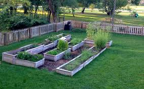 have at least four raised beds to set up a schedule for crop rotation a very helpful step in eliminating soil borne diseases