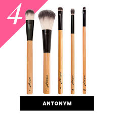 list of makeup brushes and their uses. antonym vegan makeup brushes list of and their uses