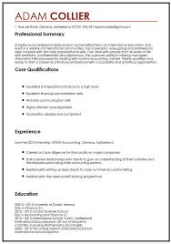 setting out a cv cv example for international students myperfectcv