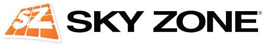 Image result for skyzone