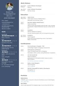 Software Developer Resume Samples Junior Software Developer Resume Example Free Resume