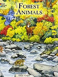 forest s coloring book dover nature coloring book