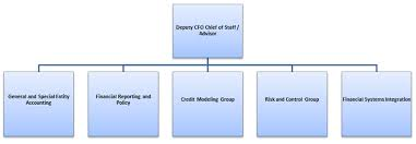 Us Treasury Org Chart Deputy Chief Financial Officer Dcfo