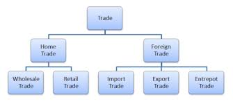 Chart Of Commerce Showing Its Branches Shule Direct