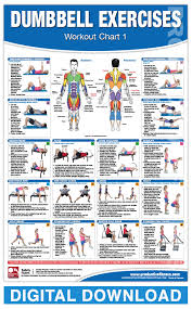 Dumbbell Workout Chart Digital Dumbbell Workout Chart 1 And 2 Productive Fitness