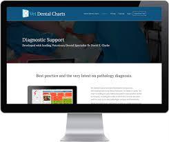 Vet Dental Charts On Behance