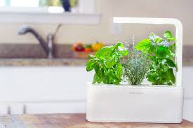 apartment herb garden. Smart Herb Garden By Click And Grow Apartment I