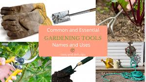 garden care roots and dirts