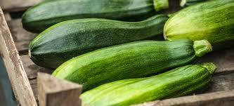 Zucchini Nutrition Low Calorie Anti Inflammatory