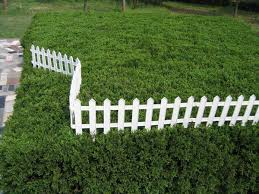 Image of: Plastic Fence Panels 2ft High
