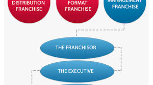Franchise Management Structure Hierarchy Hierarchy Structure