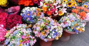 leesburg flower garden festival