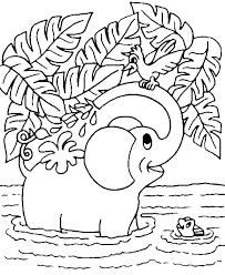 Olifanten Vind En Print Bliksemsnel Een Kleurplaat Ukkonl