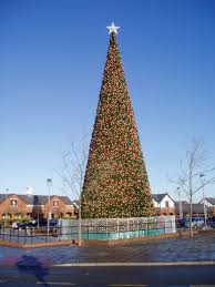 File:Giant Christmas Tree, Cheshire Oaks - geograph.org.uk - 1068113