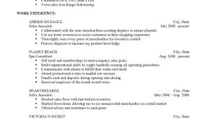Resume Examples Online Free Resume Sales Support Analyst Sample Resume