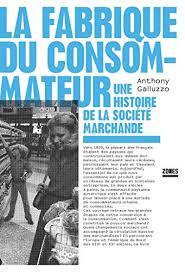 Amazon.com: La fabrique du consommateur (French Edition) eBook: GALLUZZO,  Anthony: Kindle Store
