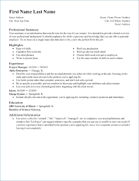 Sample Professional Resume Format Resume Example
