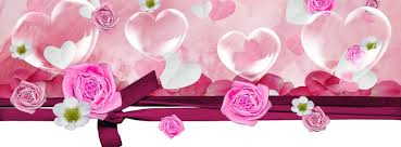 beautiful flowers cover photos for facebook timeline for girls. Modren Timeline Beautiful Flowers Facebook Profile Covers To Cover Photos For Timeline Girls