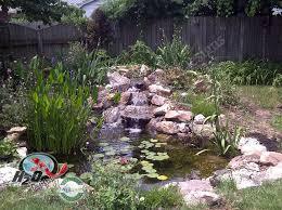 Small Picture Backyard Small Pond Ideas Backyard Design And Backyard Ideas