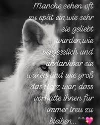 Die 597 Besten Bilder Von Zitate Sprüche Rund Um Den Hund In 2019