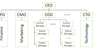 Coo Org Chart Career Paths Of The Analytics Officers