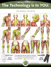 Shoulder Trigger Points Chart Trigger Points With A Golf Ball For Pain Relief Golfball