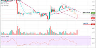 Litecoin Chart Today Litecoin Price Analysis Ltc Usd Is Bleeding Heavily Can