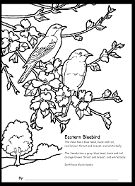 Children S Activities On Bluebirds Inside Bluebird Coloring Page