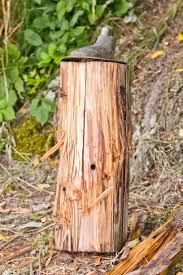Walking Logs Walking On Logs Sculpture Vandalized And One Stolen Westside Seattle