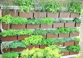 outdoor herb garden planters herb wall garden of eden story