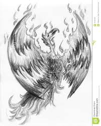 Drawings Of Phoenix Fire Bird Phoenix Stock Illustration Illustration Of Renewal