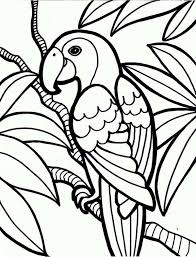 Small Picture Jungle Parrot Coloring Page Jungle Parrot Coloring Page Color