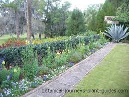 Small Picture Small Yard Landscaping Ideas from Rose Villa Landscape Design