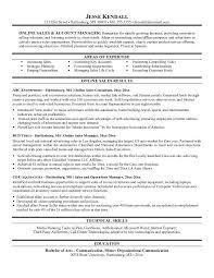 Car salesman resume description