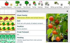 garden layout south africa. vegetable gardening for beginners south africa container garden layout