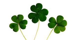 7 Good <b>Luck</b> Superstitions from Around the World | Premier Hotels