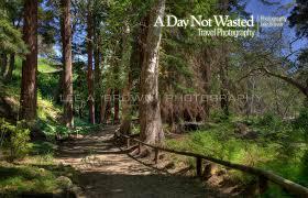 santa monica botanic gardens