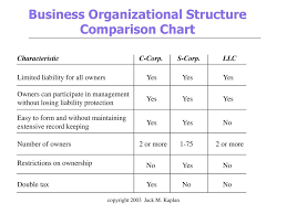 Llc Structure Chart Jasonkellyphoto Co