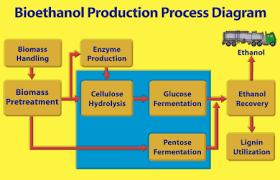 Biodiesel Compatibility Chart Bioethanol Bioethanol Vs Biodiesel