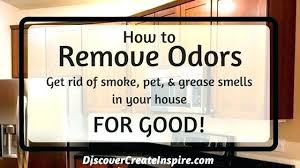 How To Get Rid Of Musty Smell In House ThePalmaHome Com Designs 4