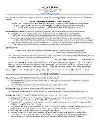 Yahoo Ceo Resume Cover Letter It Job Examples Ceo Resume Template Pdf Ceo Resume 25