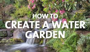 water garden palmers garden centre